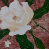 Magnolia, reduction linocut (variable edition of 5/ 2 available)