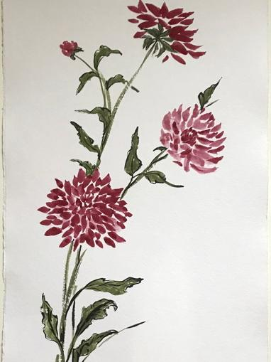 Dahlias (burgundy) 36x24""