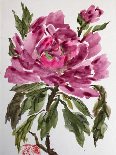 8x10 End of Summer ( Peony), available at WS Arts Council Gift Shop
