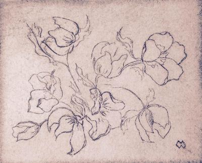 "Garden Series: *Hellebore blossoms dry-point 4""x5"""