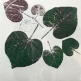 Leaf Series: Gathering