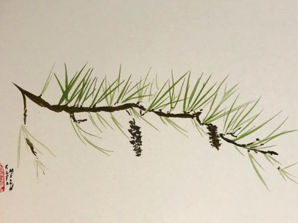 White Pine Branch 12x16