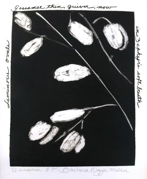 Lunaria 57: Luminous Ovals