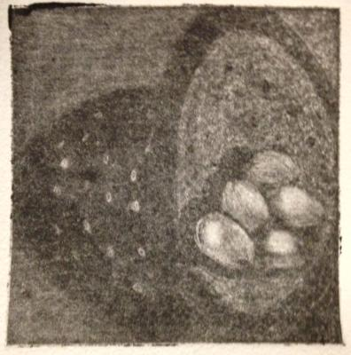 *Eggs, Colander, Shadow Mezzotint