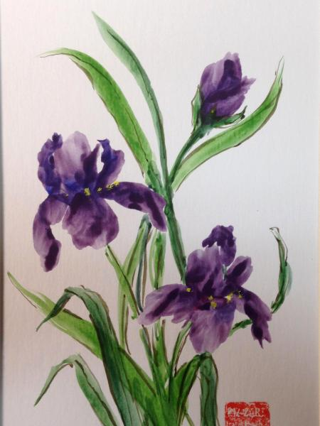 "16x12"" Iris Dance"