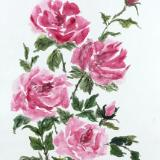 36 x24 Summer Roses