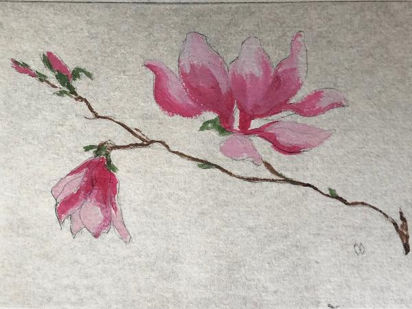 Pink magnolias  drypoint