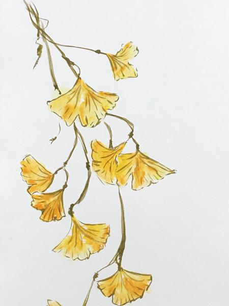 Gingko (Asian Brush Painting)