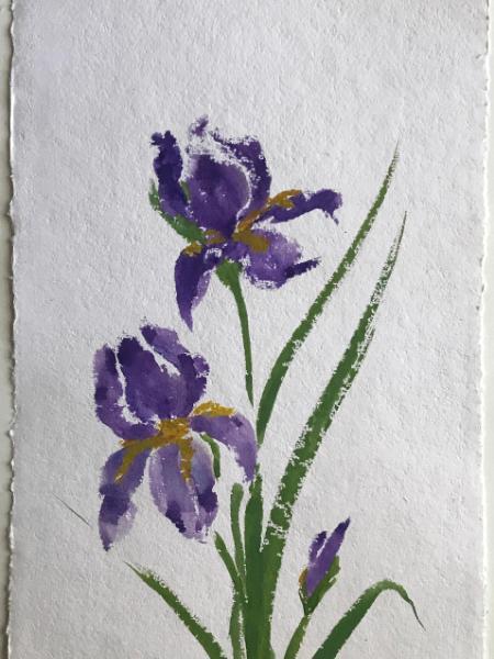 """28x20""""  Garden Irises"""