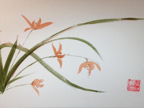 """20x16""""  Mt. 16x20"""" Orchids, five"""