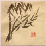 """12x12"""" Bamboo 1"""
