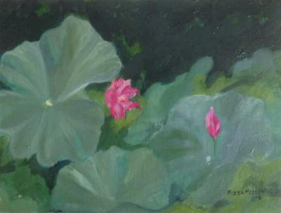 *Lotus Pond, Xian, China (sold)