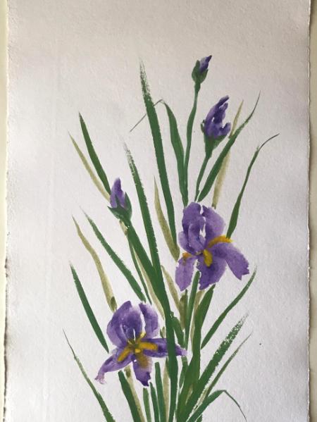 "36x24"" Iris garden (24x36"")"