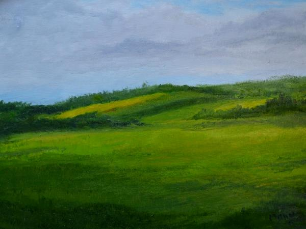 """*Patch of Yellow 12""""X16"""""""