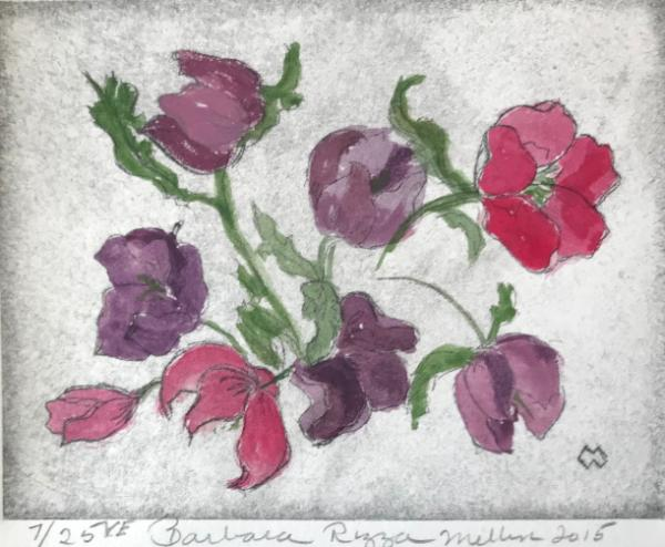 Hellebores-2  drypoint (edition still available)