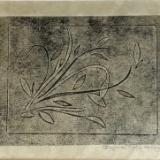 Lovely  monoprint 11x14