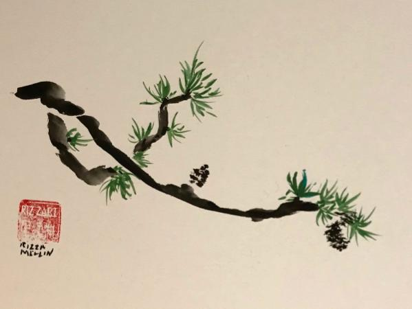Pine Branch with Cones 12x16