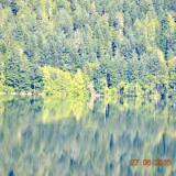 Crescent Lake (WA) greens