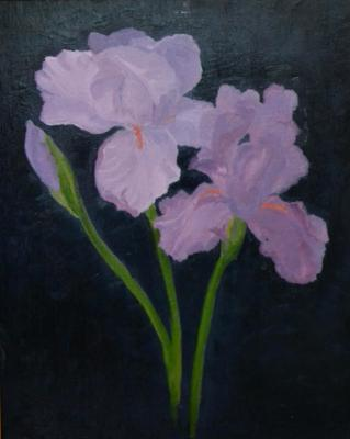 "Purple Irises 20""x16"" (sold)"