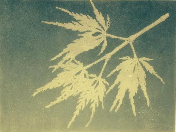 Leaf Series/Fringe Benefits