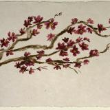 Blossom Branch 20x28 (sold)