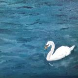 *Singular Beauty, Swan (Lake Lucerne, Switzerland) (Sold)